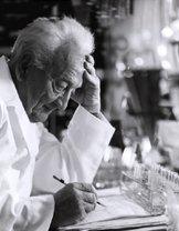 Albert Szent - Györgyi