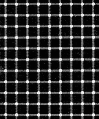 Fijar la vista en el centro ¿negros o blancos?